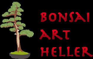 Bonsai Studio Bruno Heller