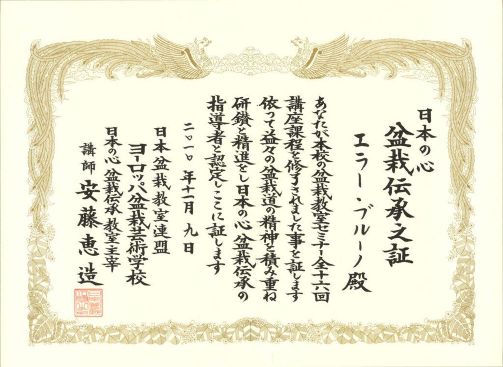 Attestation de transmetteur de la tradition du bonsaï, et de la tradition du japon, Heller Bruno, Nous attestons que vous avez suivi les 16 cours du séminaire de bonsaï de notre école. Ainsi, nous attestons que vous êtes qualifié pour enseigner le bonsaï et transmettre l'esprit du japon , en poursuivant votre travail avec effort  pour approcher de plus en plus l'esprit de la voie du bonsaï. Le 9 novembre 2010, Fédération des cours de bonsaï du japon, Ecole d'art du bonsaï en Europe, Keizo Ando , Responsable des cours du bonsaï traditionnel et de l'esprit du japon